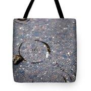 Puddlescape Tote Bag