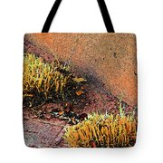 Pueblo Downtown Landscaping Tote Bag