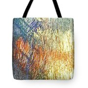 Pueblo Downtown-river Grasses 2 Tote Bag