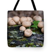 Puffball Gathering Tote Bag