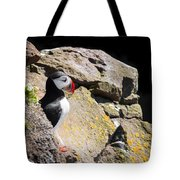 Puffin And Rocks Tote Bag