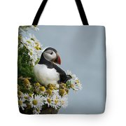 Puffin On Latrabjarg Cliff Tote Bag