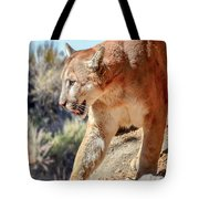Puma Mountain Lion Nature Wear Tote Bag