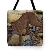 Puma Stalking Tote Bag