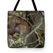 Puma Stalking Tote Bag
