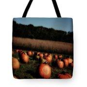 Pumpkin Field Shadows Tote Bag