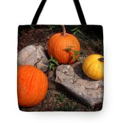 Pumpkins For October  Tote Bag