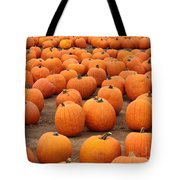 Pumpkins Waiting For Homes Tote Bag