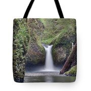 Punch Bowl Falls At Eagle Creek Closeup Tote Bag