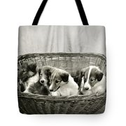 Puppies Of The Past Tote Bag