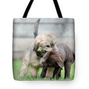 Puppies Playing Tote Bag