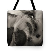 Puppy Paws Tote Bag