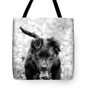 Puppy Play Tote Bag