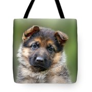 Puppy Portrait Tote Bag