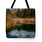 Purcells Reflected Tote Bag