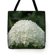 Pure Dome  Tote Bag