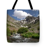 Pure Mountain Beauty Tote Bag