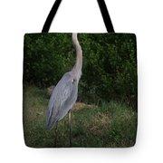 Pure Natural Beauty Tote Bag