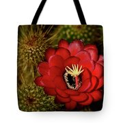 Pure Red  Tote Bag