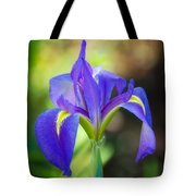 Pure Simple Beautiful Tote Bag