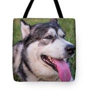 Purebred Alaskan Malamute Tongue Tote Bag