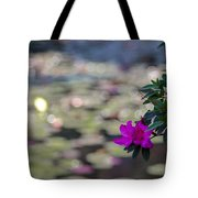 Purple-1 Tote Bag