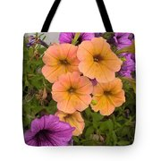 Purple And Peach Tote Bag