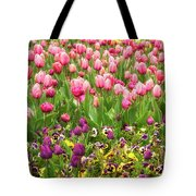 Purple And Pink Tulips In Canberra In Spring Tote Bag