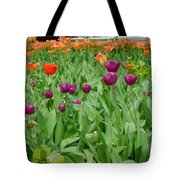 Purple And Red Tullips Tote Bag