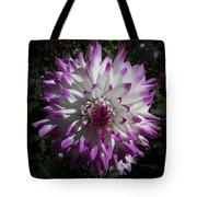 Purple And White Dahlia Tote Bag