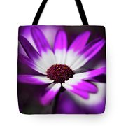 Purple And White Daisy  Tote Bag