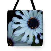 Purple And White Tote Bag