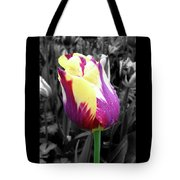 Purple And Yellow Tulip Tote Bag