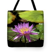 Purple And Yellow Water Lily Tote Bag