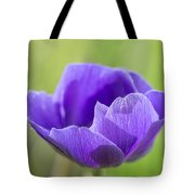 Purple Anemone Flower Tote Bag