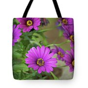 Purple Aster Flowers Tote Bag