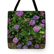 Purple Balls Of Color 2 Tote Bag