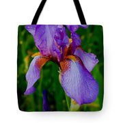 Purple Bearded Iris Portrait Tote Bag