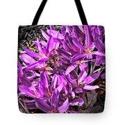 Purple Beauties Tote Bag