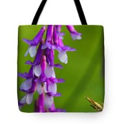 Purple Bird Vetch Plant  Tote Bag