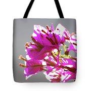 Purple Bougainvillea Flower Tote Bag
