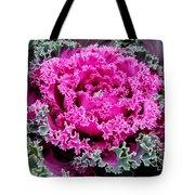 Purple Cabbage Tote Bag