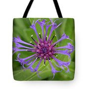Purple Centaurea Montana Flower Tote Bag