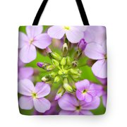 Purple Circle Of Dames Rocket Phlox In Spring Garden Tote Bag