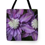 Purple Clematis 2 Tote Bag