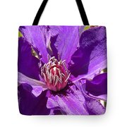 Purple Clematis IIi Tote Bag