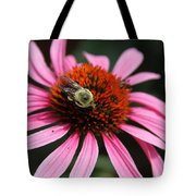 Purple Cone Flower 3 Tote Bag