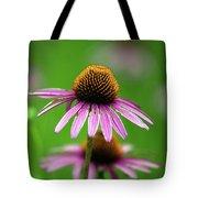 Purple Cone Flower Tote Bag