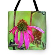 Purple Coneflower Along White Pine Trail In Kent County, Michigan  Tote Bag