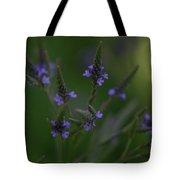 Purple Cones Tote Bag